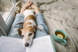 reading-dog-on-lap